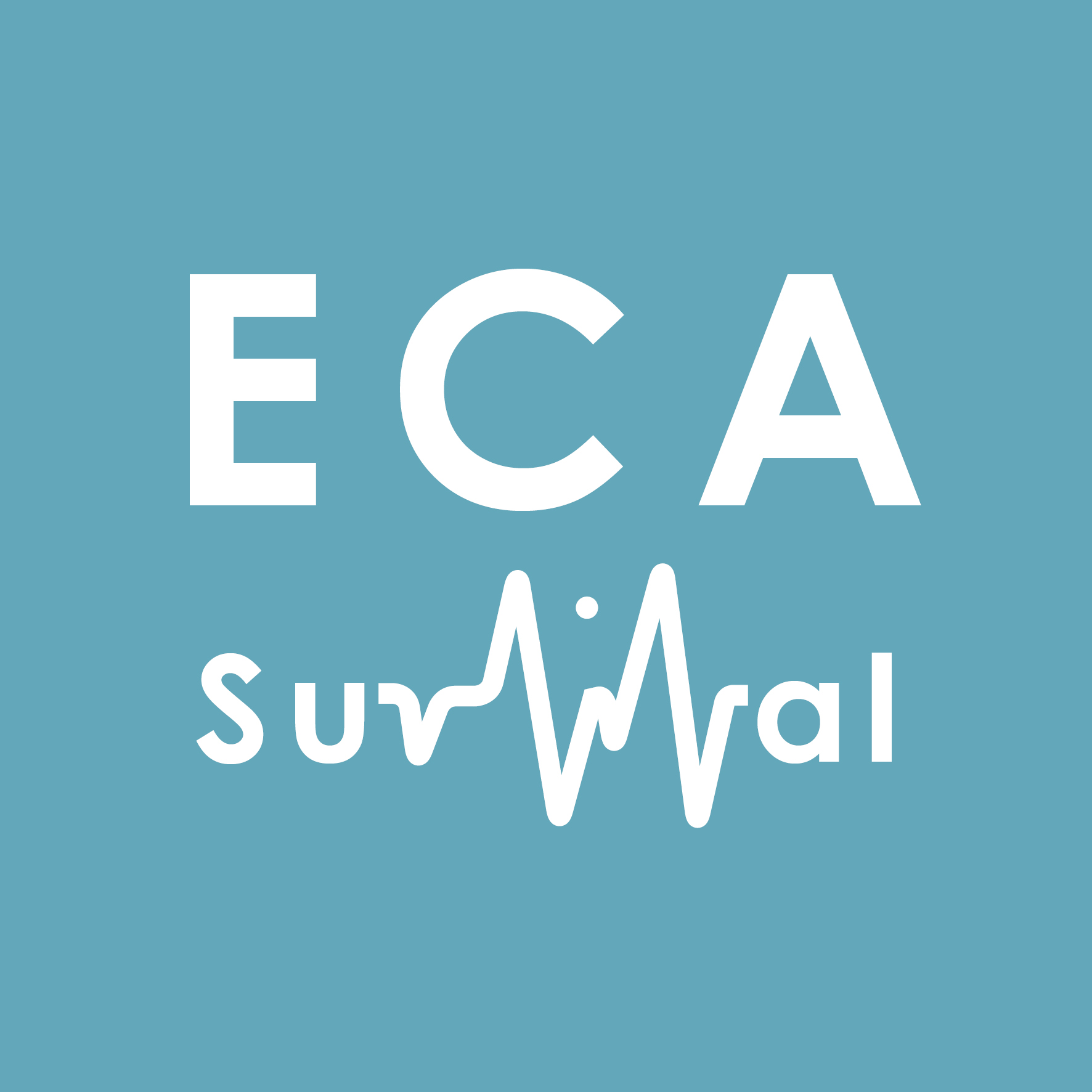 Survival Strategies for Humanities ECAs